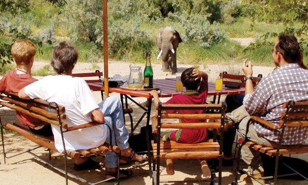 Govt plans tourism initiative