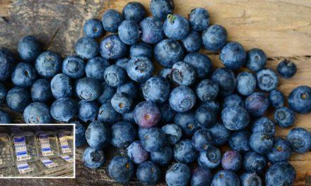 Blueberrylicious