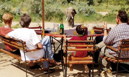 Tourists to quarantine – Geingob