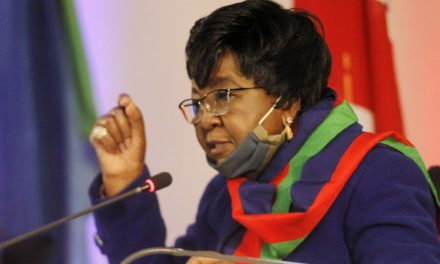 'Good riddance': Shaningwa on resignations