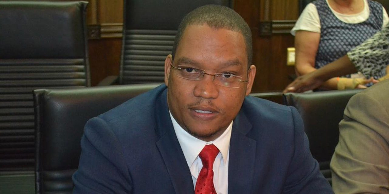 Swartbooi raises questions over ballot papers  …as polls open tomorrow