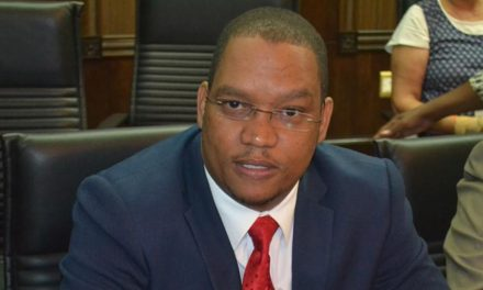 Swartbooi calls for parallel genocide negotiations