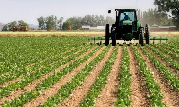 Agriculture and the ecosystems