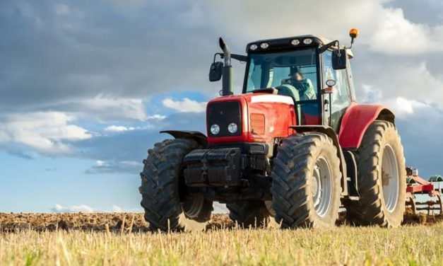 The Importance of Market Research in Agribusiness Ventures