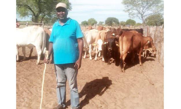 When farming becomes a livelihood