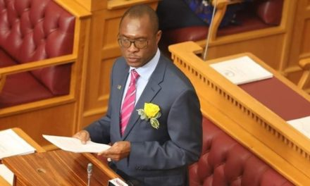 Shiimi tables declining budget … as sin tax is upped