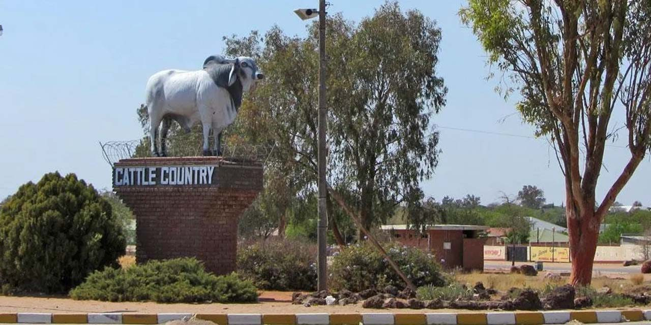 Gobabis management committee forges ahead after Louw's passing