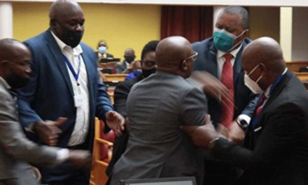 Mace could have harmed Geingob, guard claims …as LPM leaders to appear before privileges committee