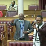 Swartbooi, Seibeb feels penalty unclear