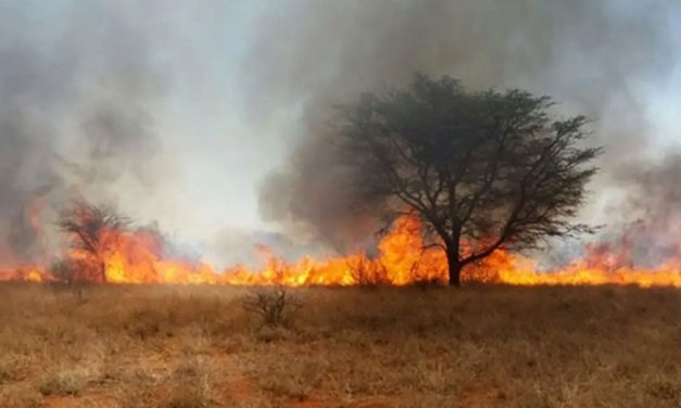 Raging veld fires soar on, as Tsumeb reports another