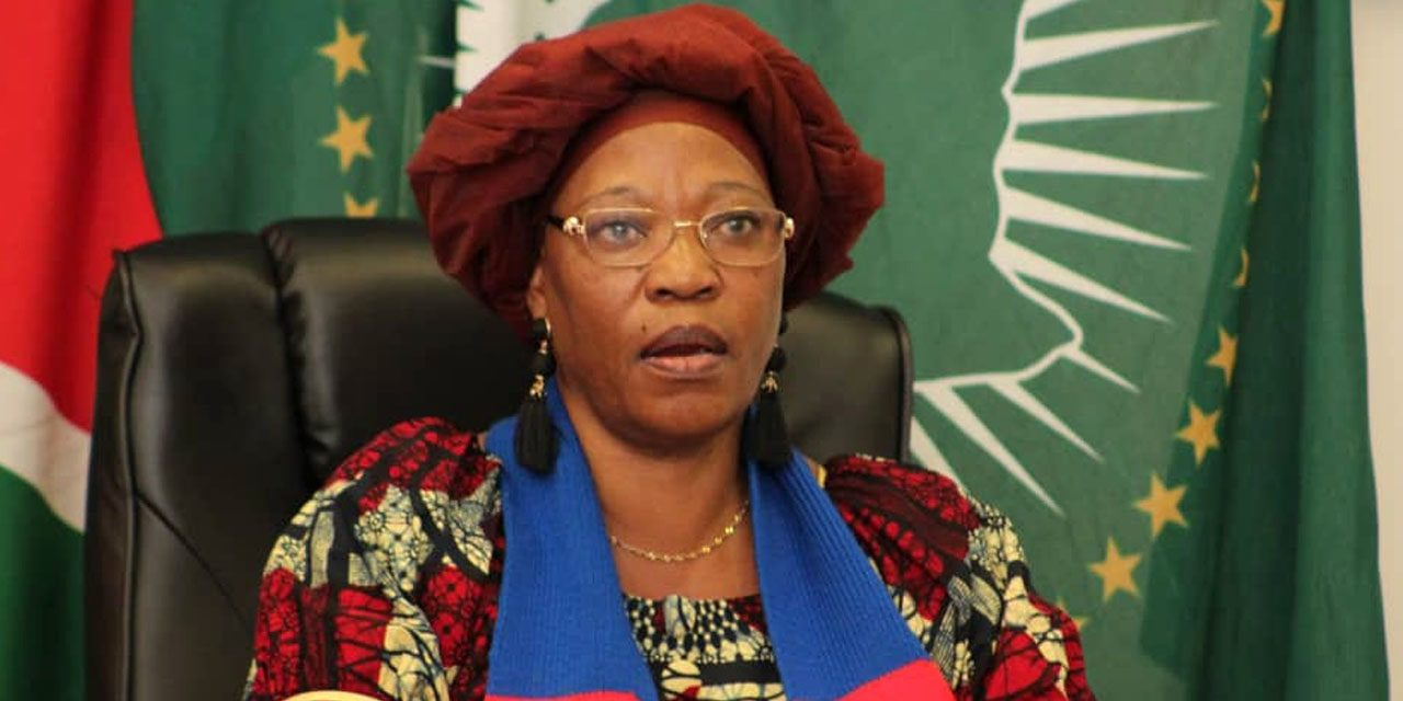 Swapo launches online newsletter and website